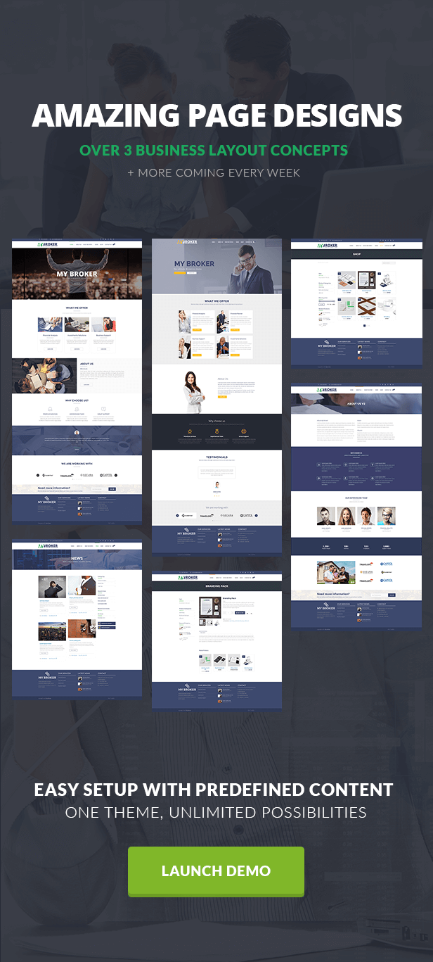 My Broker - Consulting Business and Finance WordPress Theme - 2